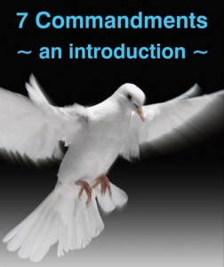 Noah's dove and the 7 Commandments