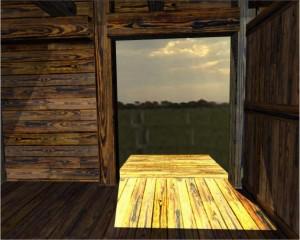 Looking out of the ark's door