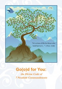 Good for you - the Noahide Code