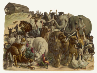 The animals leaving Noah's Ark