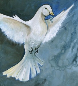 Noah's Dove © by Susan Y.
