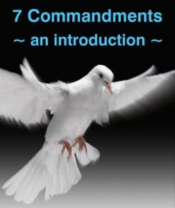Noah's dove and the 7 Commandments