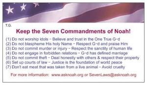 American Flag 7-Laws Wallet Card