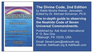 The Divine Code - Wallet Card