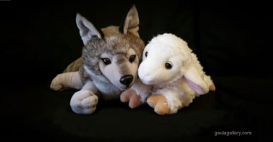 Wolf and Lamb from Geula Gallery